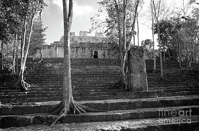 Photograph - Calakmul Temple Campeche Mexico by John  Mitchell