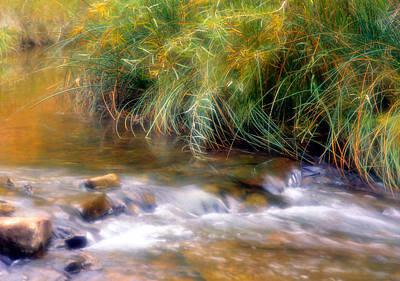 Photograph - Calf Creek In Grand Staircase- Escalante Nat'l Monument  by Douglas Pulsipher