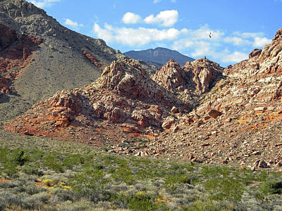 Photograph - Calico Basin View by Frank Wilson