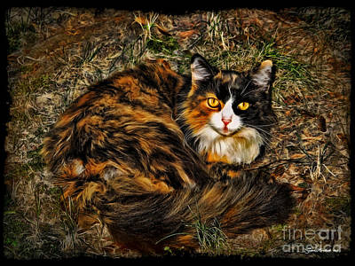 Photograph - Calico Cat by Joan  Minchak