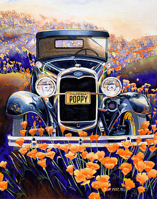 California Poppy Art Print by Mike Hill