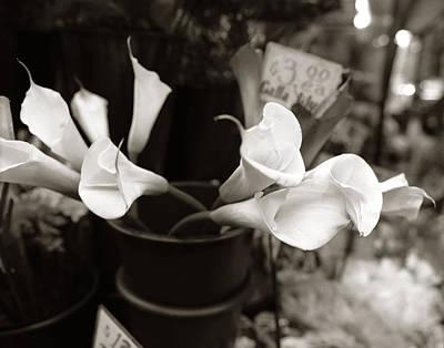 Calla Lily At Market Original