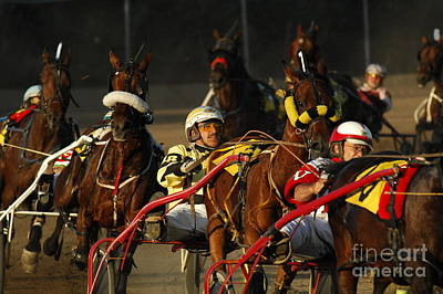 Harness Racing Photograph - Calm Cool Collected by Bob Christopher