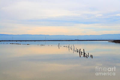 Photograph - Calm Morning Waters by Wingsdomain Art and Photography
