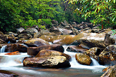 Photograph - Calming Waters by Cheryl Davis