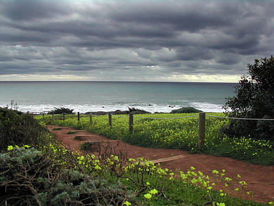 Photograph - Cambria Trail by Matt Hanson
