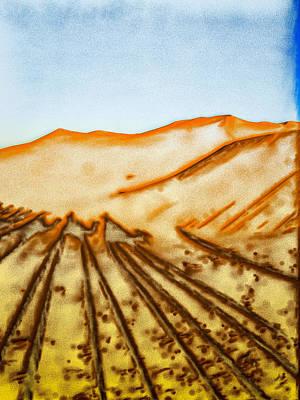 Sahara Photograph - Camel Shadows by Tom Gowanlock