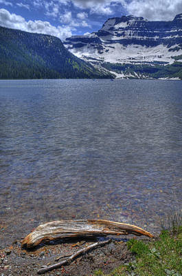 Photograph - Cameron Lake Driftwood by Don Wolf