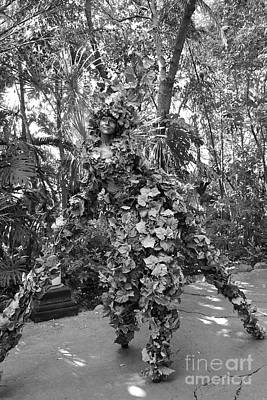 Photograph - Camouflaged Tree Street Performer Animal Kingdom Walt Disney World Prints Black And White by Shawn O'Brien