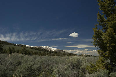 Photograph - Camp View 2 by Sara Stevenson