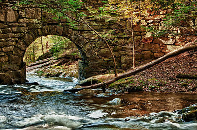 Photograph - Campbell Falls Bridge by Fred LeBlanc