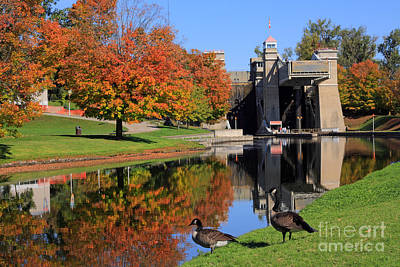 Canada Geese At Lift Lock Art Print by Charline Xia