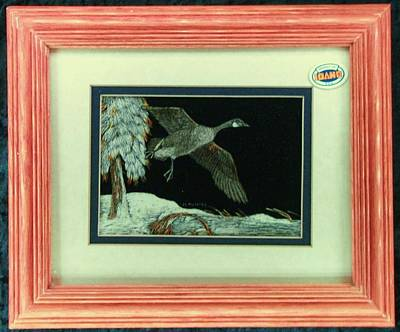 Canadian Geese Mixed Media - Canadian Goose On The Wing by Josephine Mulalley
