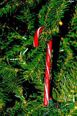Photograph - Candy Cane On Tree Digital by Susan Stevenson
