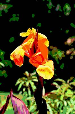 Canna In Summer Art Print