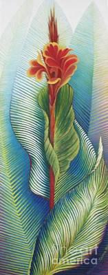 Canna Striata Art Print