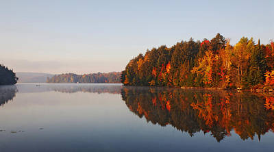 Fall Colour Digital Art - Canoe Lake  Algonquin by Pat Speirs