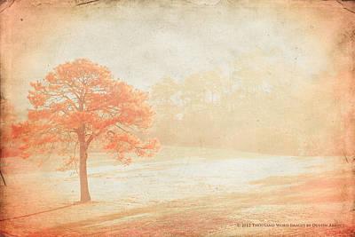 Kim Klassen Texture Photograph - Canvas by Dustin Abbott