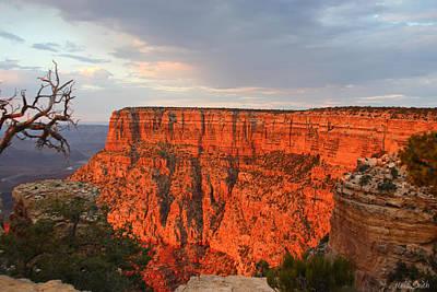 Photograph - Canyon Beauty by Heidi Smith