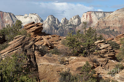 Photograph - Canyon Trail Overlook by Sandra Bronstein