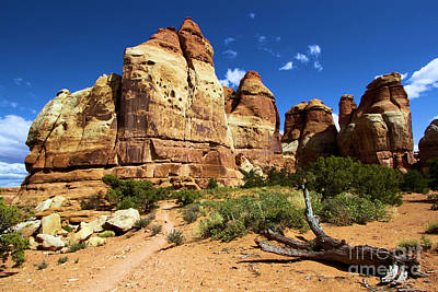 Photograph - Canyonlands Chesler Park by Adam Jewell