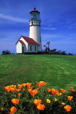 Cape Blanco Lighthouse Oregon Art Print by Dave Mills