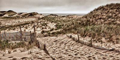 Photograph - Cape Cod Dunes by Fred LeBlanc