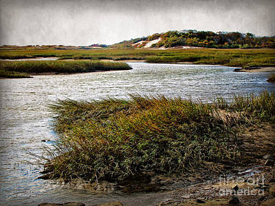 Photograph - Cape Cod National Seashore by Joan  Minchak