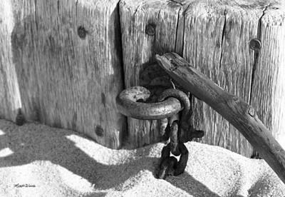 Photograph - Cape Cod National Seashore Still Life by Michelle Constantine