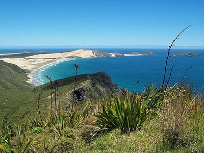 Photograph - Cape Reinga - North Island by Peter Mooyman