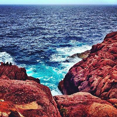 Igaddict Photograph - Cape Spear by Christopher Campbell