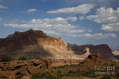 Photograph - Capitol Reef by Timothy Johnson