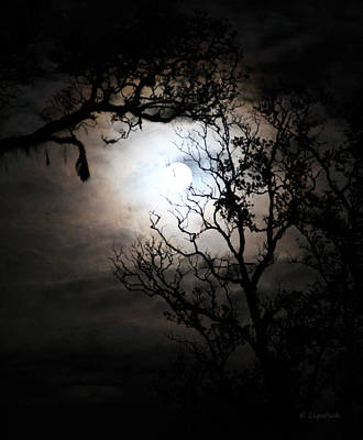 Moonlit Night Photograph - Capturing The Full Moon by Kerri Ligatich