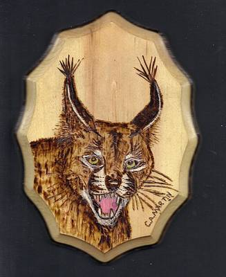 Pyrography Pyrography - Caracal by Clarence Butch Martin