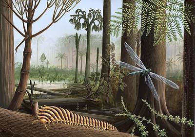 Meganeura Photograph - Carboniferous Insects, Artwork by Richard Bizley