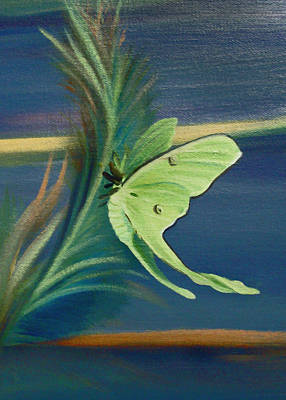 Painting - Card Of Luna Moth by Nancy Griswold