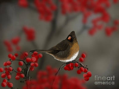 Cardinal Among The Berries Art Print