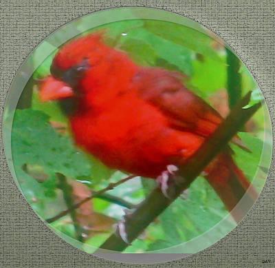 Bird On The Ground Mixed Media - Cardinal Rings by Debra     Vatalaro