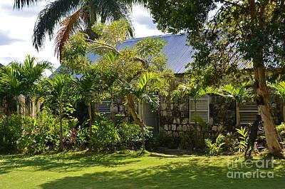 Photograph - Caribbean Garden by Carol  Bradley