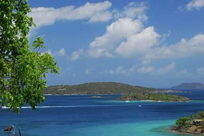 Music Figurative Potraits - Caribbean Paradise by Gary Wonning