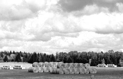 Photograph - Cariboo Country Hay Bales by Will Borden
