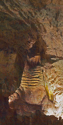 Photograph - Carlsbad Caverns Walrus by Gregory Scott