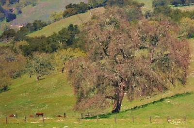 Photograph - Carmel Valley Spring Two by Jim Pavelle