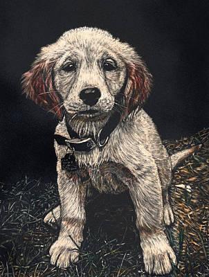 Carmen The Puppy Art Print by Robert Goudreau