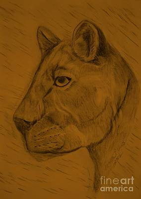Drawing - Carnivore by Maria Urso