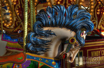 Photograph - Carousel Beauty Star Of The Show by Bob Christopher