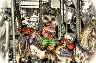 Photograph - Carousel Cat by Wayne Sherriff