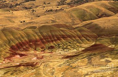 Photograph - Carroll Rim Painted Hills by Adam Jewell