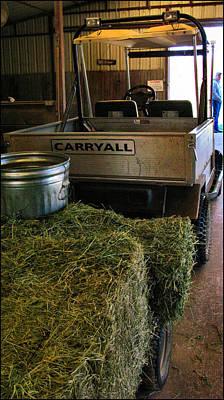 Photograph - Carryall 2009 by Glenn  Bautista