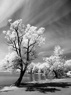 Photograph - Carthew Bay by John Jacquemain